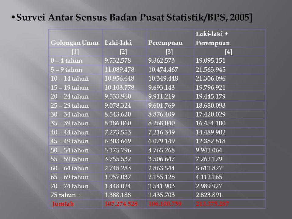 Survei Antar Sensus Badan Pusat Statistik/BPS, 2005]